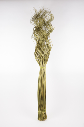 CURLY WILLOW X200 VERDE 130CM