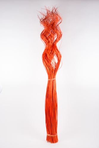 CURLY WILLOW X200 ROSSO 130CM