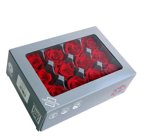 ROSE STAB.MINI ROSSO ROUGE (12) D3,5CM