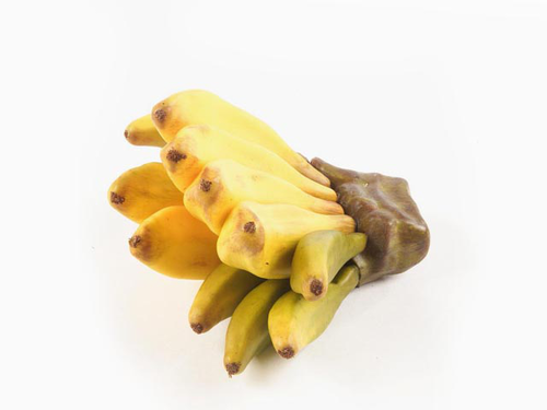 BANANA BUNCH 10CM GIALLA